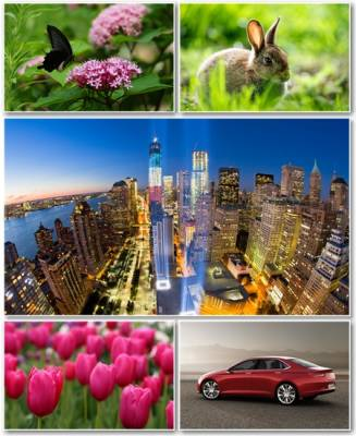 Best HD Wallpapers Pack №914